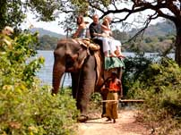 Elephant ride Sri Lanka