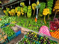Great market Dambulla