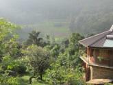 Hôtel Ecolanka Maussawa - Sri Lanka