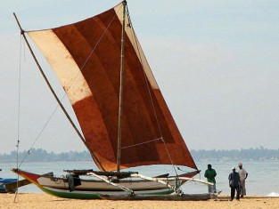 Negombo boats