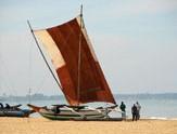 Sri-Lanka-Negombo-bateau