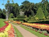 Perradeniya botanical garden