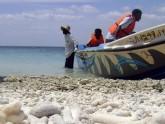 Jaffna fishermen