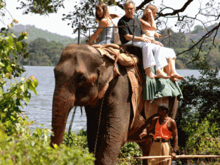 Family on elephant
